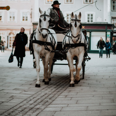 Salzburg Altstadt Kutsche