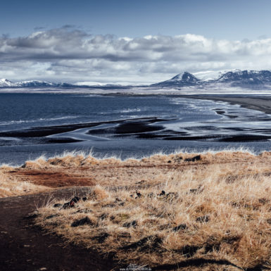 Iceland Hvitserkur